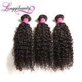 Weave indiano do cabelo Kinky do Afro de Remy do Virgin da qualidade superior