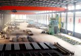 Atelier en acier de structure de bâti de l'espace de grande envergure