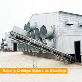 Type automatique volaille de 4 rangées H de couche de cage de poulet