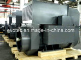 13.8kv High Voltage Double Bearing AC Pmg Alternator