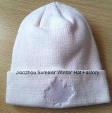 La manera del estilo de la muestra libre hizo punto el casquillo bordado casquillo del invierno del sombrero de la gorrita tejida (S-1017)