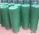 Гальванизировано или PVC Coated Iron Welded Wire Mesh