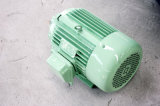 3kw com 500rpm Horizontal Permanent Magnet Generator/Wind Generator