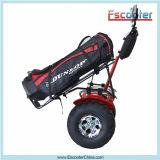 Carros de golfe elétricos cobrando do tempo da certificação 4-5h do Ce com equipamento da proteção