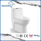 Ceramische Toilet van de Kast van Siphonic van de badkamers het Tweedelige (AT3000)