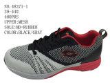 No 48371 ботинки вскользь ботинок людей Stock