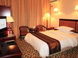 O fundamento clássico do hotel ajusta o fornecedor