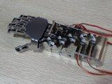 Mão do robô e braço do robô para ensinar e treinar
