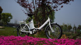 En15194 20 ' 250W Folding Electric Bicycle für Israel (TDN03Z-636)