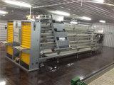 Volledige het Voeden van de Laag van de Lage Kosten van de Reeks Automatische Apparatuur voor de Kooien van de Laag