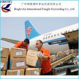 Taux bon marché de la distribution de site Web exprès DHL Federal Express pour les marchandises sensibles de Chine vers le Venezuela