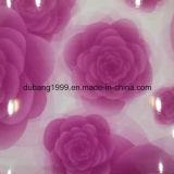 PPGI mit Blumen-Entwurf von der Fabrik