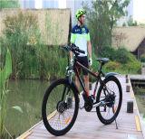 48ボルトのリチウム電池が付いている電気バイクの変換キットの電気バイク