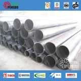 AISI acero inoxidable sin soldadura de tubos de acero (TP304L TP316L TP310S)