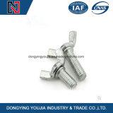 Parafuso da porca de asa do aço inoxidável do fabricante de China