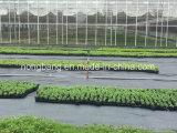 زراعيّة مبلمرة [ويد] غطاء أسود بلاستيكيّة تحكّم عائق