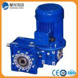 Motor doble del engranaje de gusano Nmrv030/063