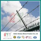 Barbelé clôturant le prix/frontière de sécurité de garantie simple de fil de /Double