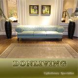 Sofa à la mode de cuir de salle de séjour d'arrivée neuve (B28)