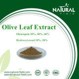 純粋で自然なオリーブ色の葉のエキス、Oleuropein CAS: 32619-42-4プラントエキス