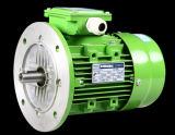 Motor de indução elétrica de alumínio trifásico da C.A. do corpo da Senhora Série
