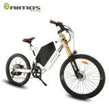 Bicicleta eléctrica respetuosa del medio ambiente de la potencia verde del OEM de la fábrica