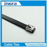 Plein noir pulvérisé époxy de serres-câble en métal d'acier inoxydable pour extérieur