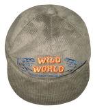 Chapeau d'hiver (WH007)