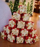 Natale Giftbox Light con il LED (IL109035)