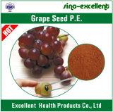 Poudre organique de graine de raisin d'extrait de Nutural