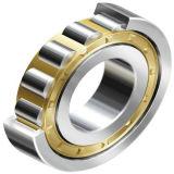 Angepasstes Soem hält hohe U-/Minpeilung-zylinderförmige Rollenlager instand
