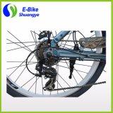 Elektrisches Fahrrad der Shuanye Fabrik-Dame-36V