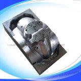 Disegno dello stampaggio ad iniezione e sviluppo (XQ-005)