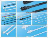 Marinenylonkabelbinder-Nylonreißverschluss-Gleichheit mit Stainess Stahl-Widerhaken