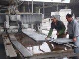 Dnfx-1800 Automatic Stone Profiling Linear Gantry Scherpe Machine