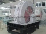 T, мотор Tdmk1000-32/2600-1000kw электрической индукции AC стана шарика Tdmk крупноразмерный одновременный низкоскоростной высоковольтный трехфазный