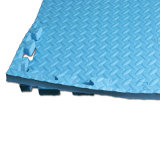 Stuoie della gomma piuma di EVA del centro di forma fisica di alta qualità--Pavimento di struttura del foglio