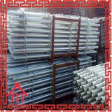 Layher Baugerüst-Aufbau-Betonplatte-Verschalung Ringlock Gestell