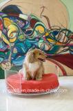Het super Bed van de Hond van de Kwaliteit Acryl Gebogen