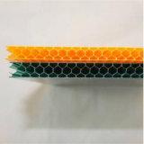 Feuille en plastique de blocage UV de toiture de polycarbonate de nid d'abeilles