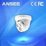 Câmera do IP da abóbada para o sistema de alarme Home esperto