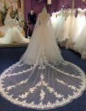 Vestido de casamento Princess Satin / Tulle com trem Applique