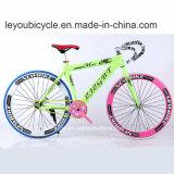 다채로운 탄소 산악 자전거 (ly 55)