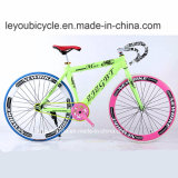 Bici de montaña colorida del carbón (ly-a-55)