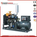 220kVA 176kw 200kVA 160kw Ricardo Kofo 6126-68de/187kw elektrischer Dieselgenerator