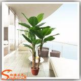 Arbre décoratif d'usines de banane artificielle à la maison de décoration