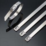 Fabrik-Großverkauf-selbstsichernder Edelstahl-Kabelbinder