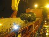 Logística de tamanho grande rápida da carga de China ao mundo