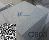 G603自然で白い水晶灰色の花こう岩の平板