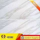mattonelle di ceramica della parete di pietra del materiale da costruzione di colore grigio di 300X600mm (SL36012)